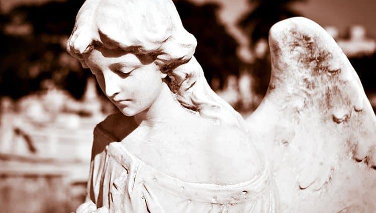 Sonhei que falava com um anjo...