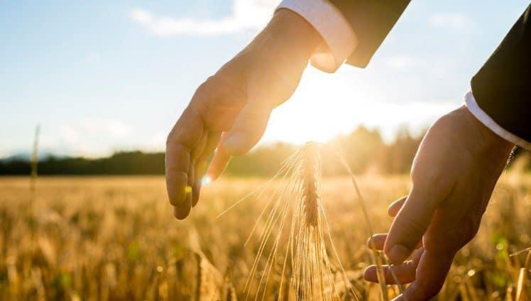 12 hábitos para atrair prosperidade