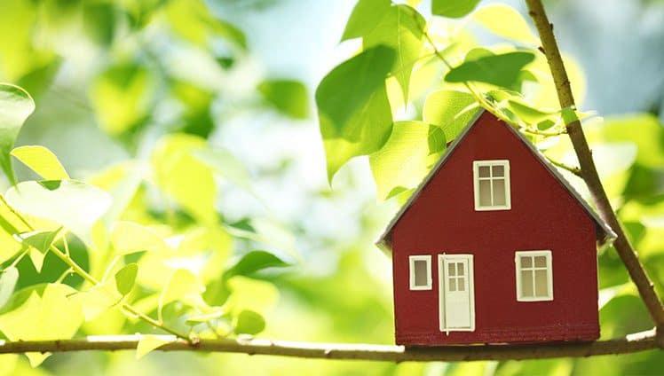 Limpando as energias do seu lar