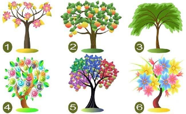 escolha uma árvore e nós