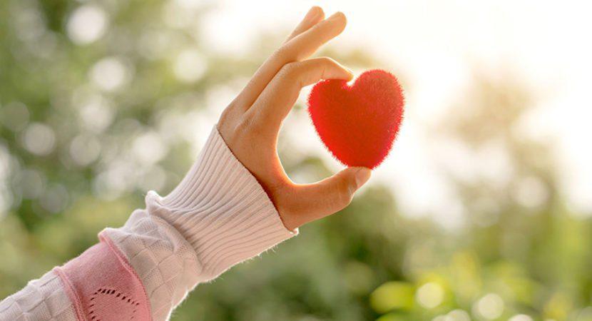 Li%C3%A7%C3%A3o-do-Amor-%C3%89-tempo-de-renovar-mudar-as-atitudes-e-contribuir-com-o-Todo.-site-830x450.jpg