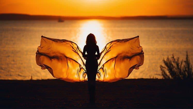 Não haverá borboletas se a vida não passar por longas e silenciosas metamorfoses site
