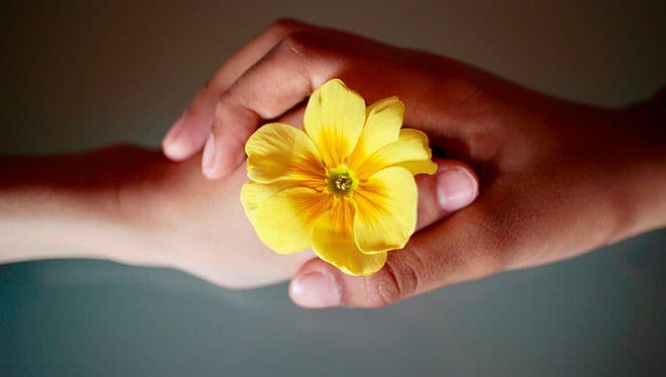 Leve em seu coração apenas o que lhe fez crescer e amadurecer site 1