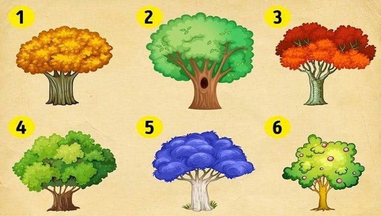 escolha uma árvore