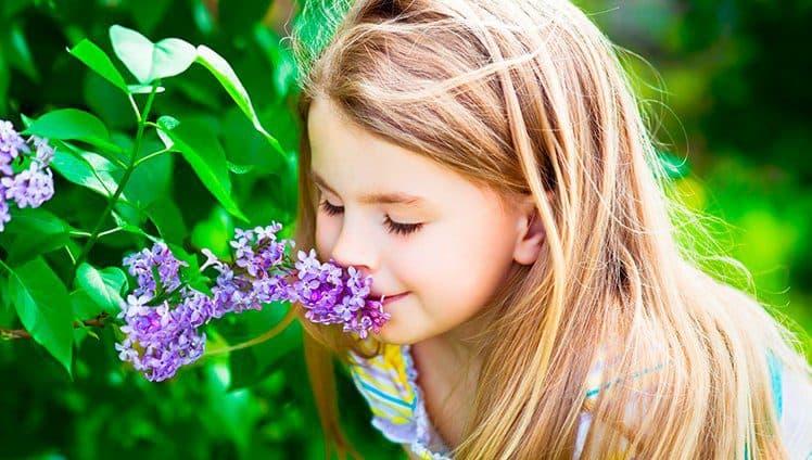 As flores de nossa vida...