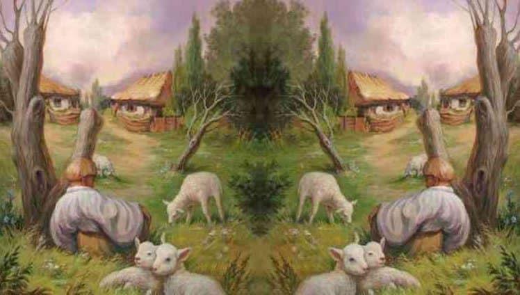 o que você vê
