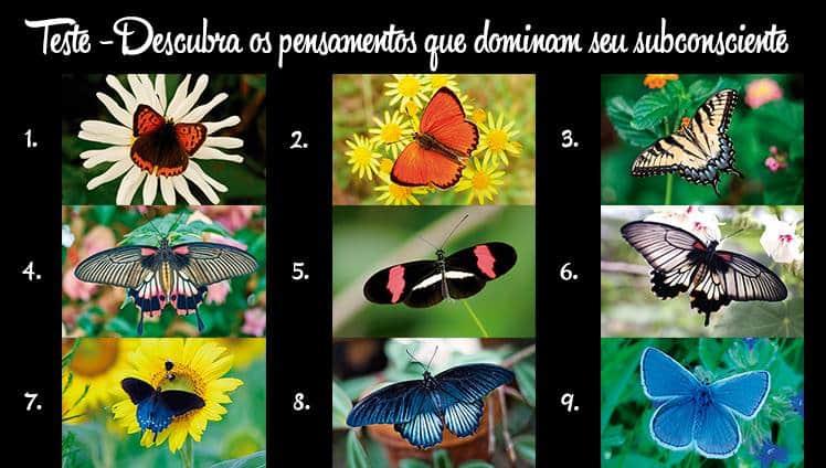 Escolha uma borboleta