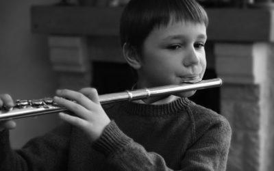dê instrumentos musicais
