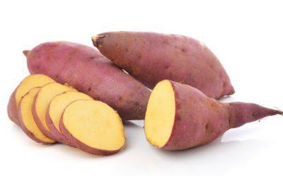 a batata-doce