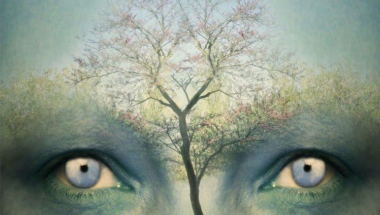 Teste da Árvore de Karl