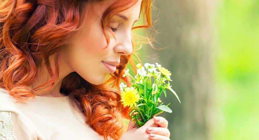 Conheça o poder das flores