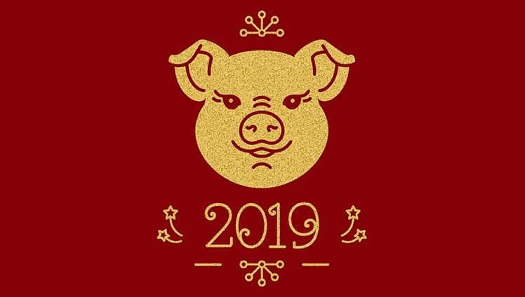 2019 - Ano do Porco