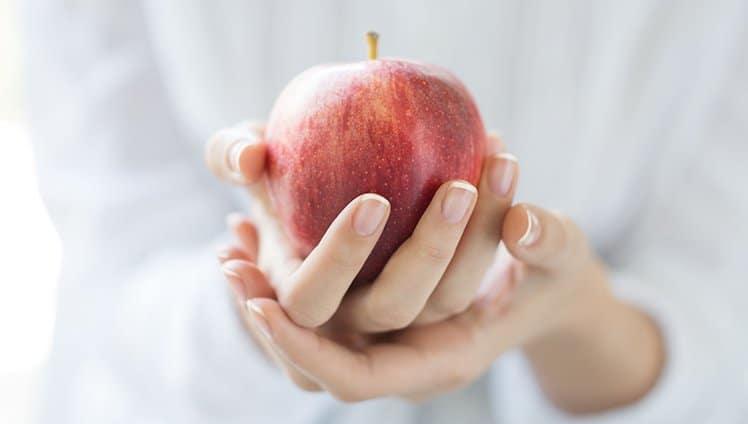 o fruto do conhecimento
