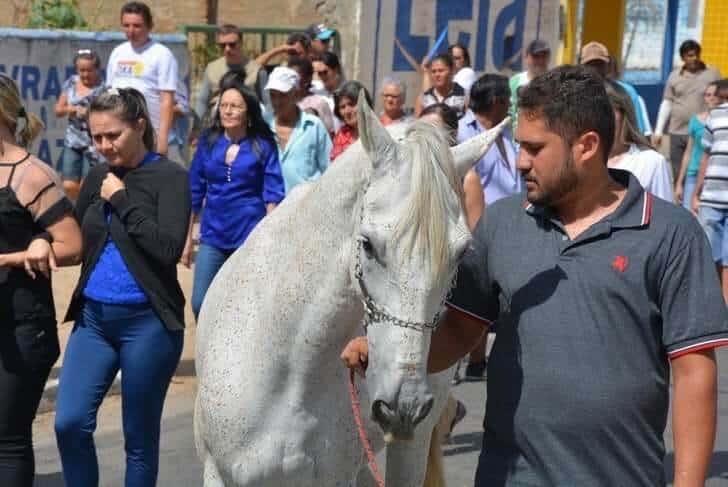 cavalo vai ao funeral3