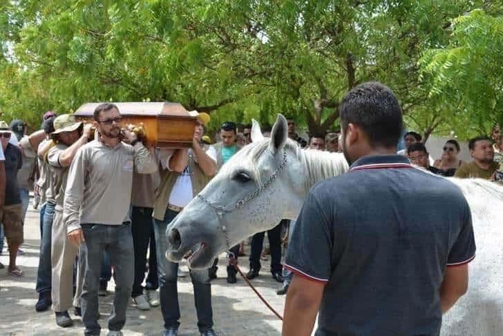 cavalo vai ao funeral5