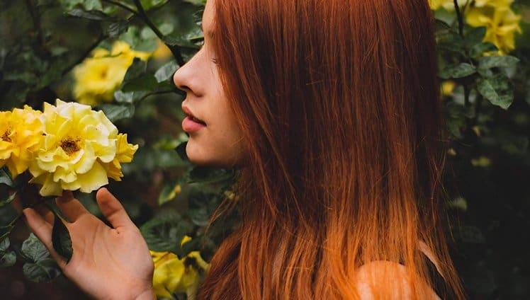 desabrochar das flores