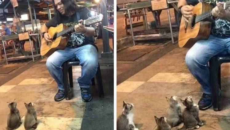 um cantor de rua