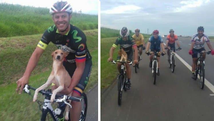 ciclistas encontram cão