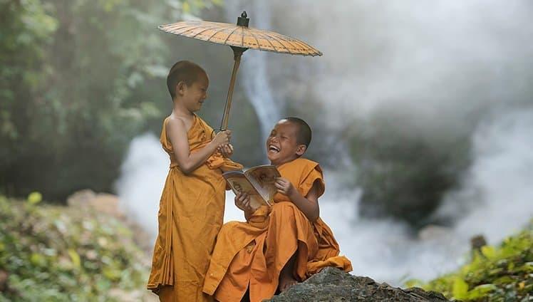 Cultive a paz