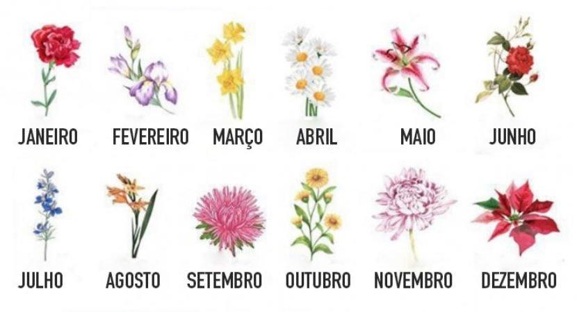 escolha a flor