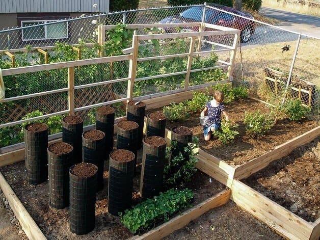 garotinha cultiva horta5