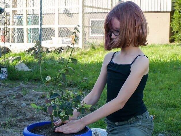garotinha cultiva horta6