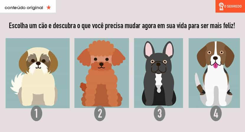 O seu cão favorito te dirá o que você precisa mudar em sua vida
