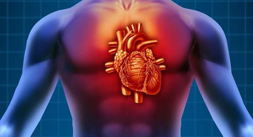 5 sinais que o seu corpo envia quando o seu coração não está funcionando bem
