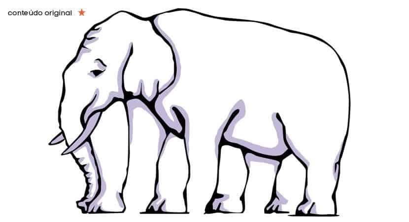 Quantas pernas o elefante tem Este teste confundirá a sua mente