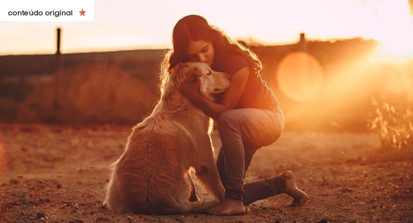 os cães não ligam para posses. Eles só querem o nosso coração