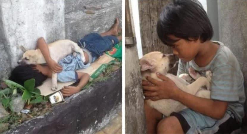 2 Menino abandonado adota cachorro de rua apesar de pobreza