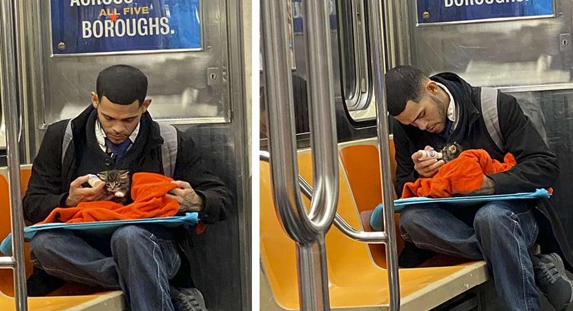 CAPA Jovem resgata e alimenta gatinho no metro ainda ha pessoas decentes por ai