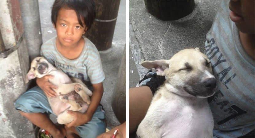 Capa Menino abandonado adota cachorro de rua apesar de pobreza extrema. Eles cuidam um do outro