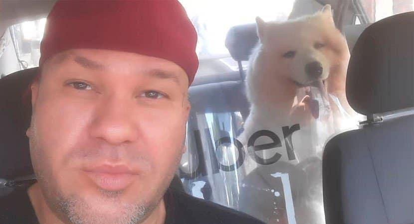Motorista de aplicativo salva cadela que iria para eutanásia Deus me deu essa oportunidade