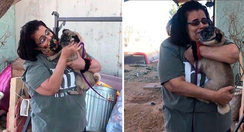 Nunca perdia as esperanças diz mulher que reencontrou seu cão após 6 anos