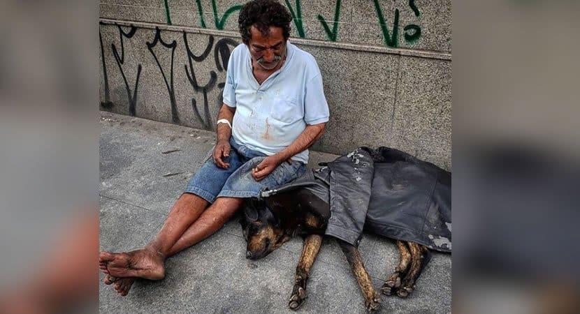 capa Morador de rua usa unico casaco para proteger cachorro do frio Nao desampara o seu melhor amigo