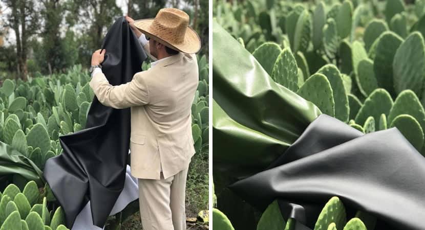 CAPA Empresarios criam couro vegano feito de cacto Chega de usar os animais