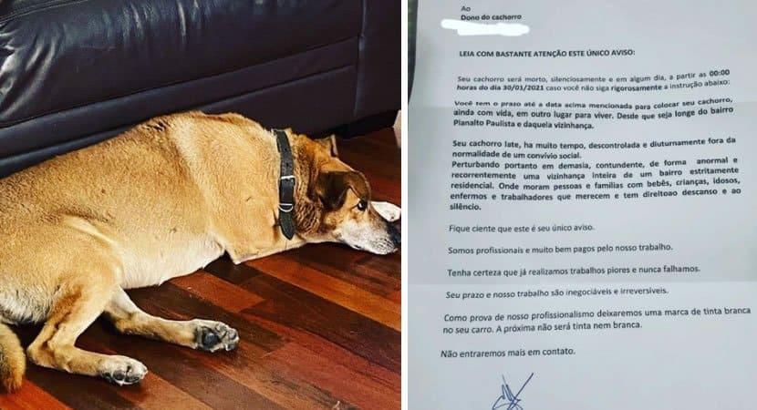 capajovem expoe carta de anonimos profissionais ameacando sua cadela de morte por conta de latidos