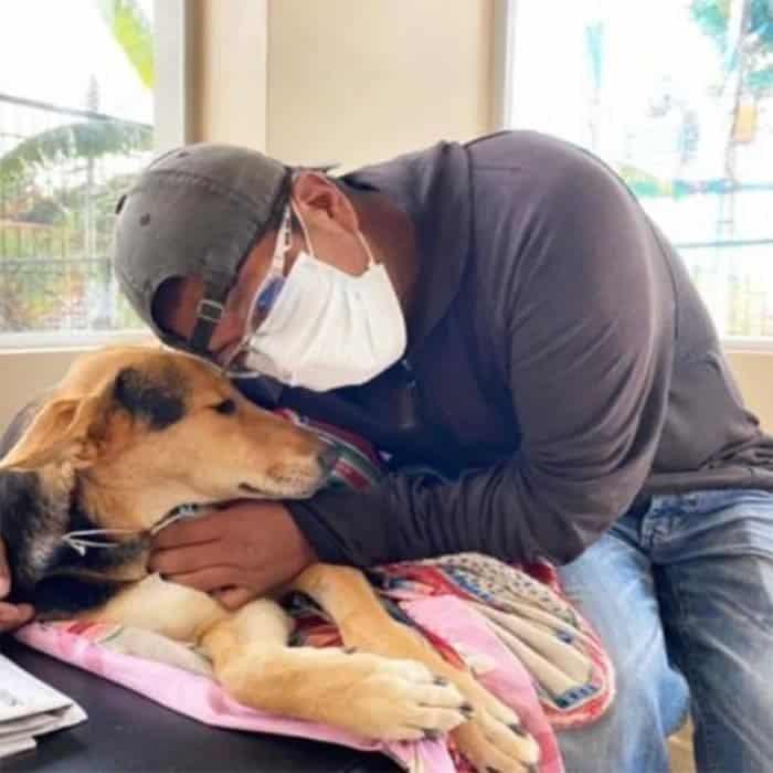 3 Homem anda quilometros todos os dias em busca de ajuda para cadela com paralisia. Nao a abandona