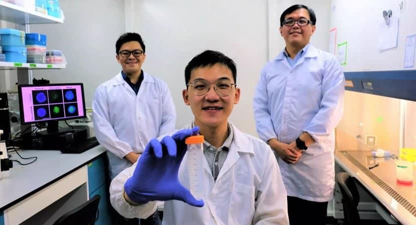 CAPA Cientistas desenvolvem Cavalo de Troia que ataca celulas cancerosas sem uso de drogas