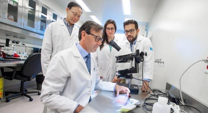 Pesquisadores encontram a cura para a diabetes os testes em humanos devem comecar em breve