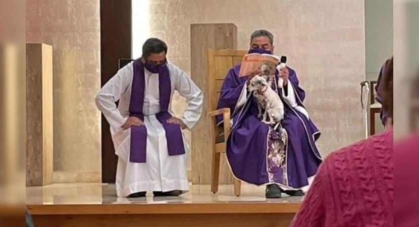 3 capa Padre celebra missa com sua cachorrinha para nao deixa la sozinha Amor pelos animais