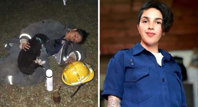 2 capa Depois de salvar caozinho de incendio bombeira adormece de exaustao o protegendo