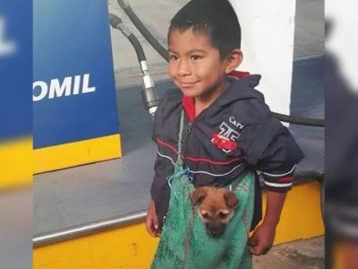 3 capa Menino humilde carrega seu caozinho em bolsa Apesar das adversidades ele cuida do amigo