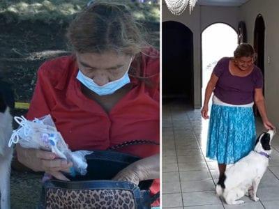 6 capa Idosa que morou em praca com caozinho recebe ajuda de desconhecido e agora tem um lar
