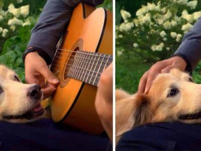 1 Capa Homem faz linda homenagem a cachorrinha falecida tive que dizer adeus a minha melhor amiga