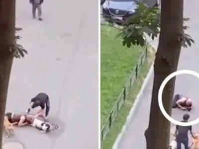 arriscando a propria vida tutor faz escudo humano para salvar cao do ataque de dois pitbulls