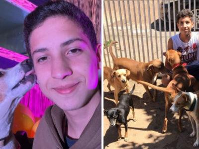 capaestudante de veterinaria de 18 anos cria instituto que resgata e muda a vida de caes e gatos de rua