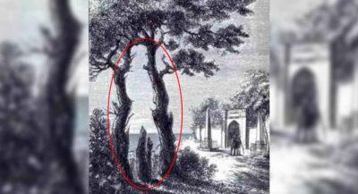 1 2 Teste visual Voce consegue encontrar em 30 segundos o homem escondido no desenho