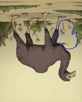 6 2 Teste de percepcao o dono do dromedario esta escondido na imagem encontre em 20 segundos